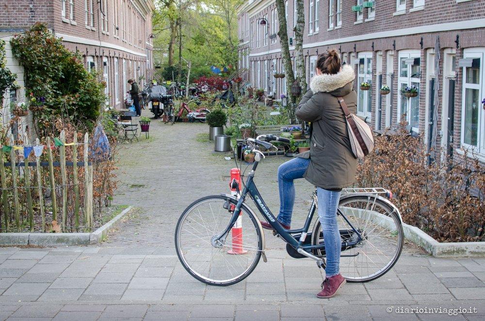 ad Amsterdam in bicicletta