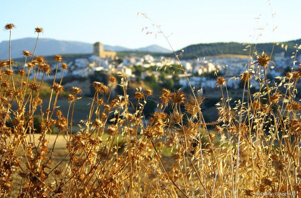 da Malaga a Granada in auto