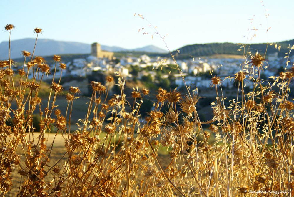 Viaggio on the road Andalusia