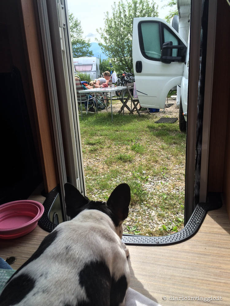 cane in camper
