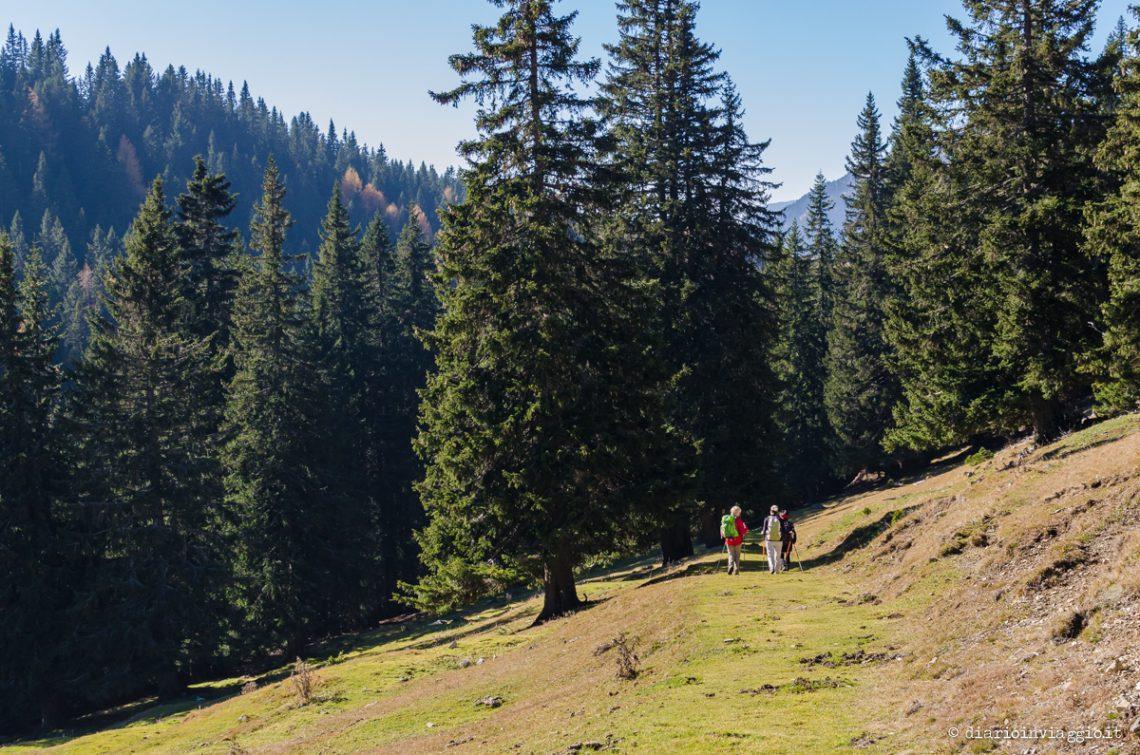 Trekking Anello del Monte Osternig