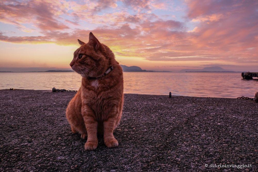 viaggio in norvegia - tramonto alesund