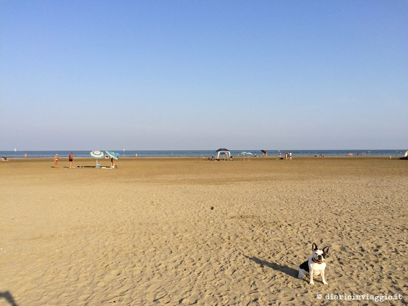 lola in spiaggia a caorle
