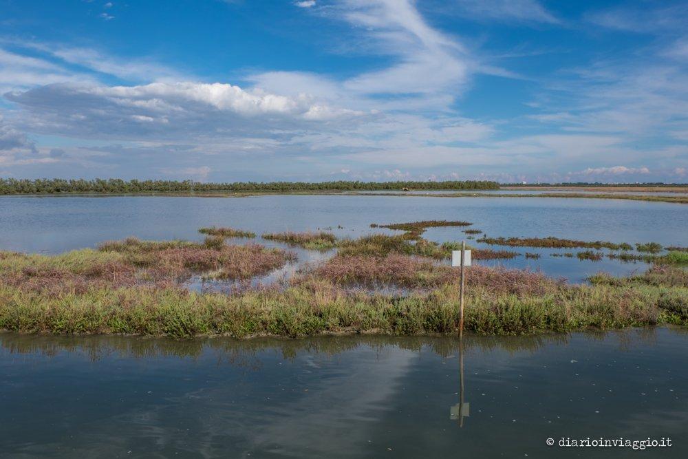 laguna nord di Venezia