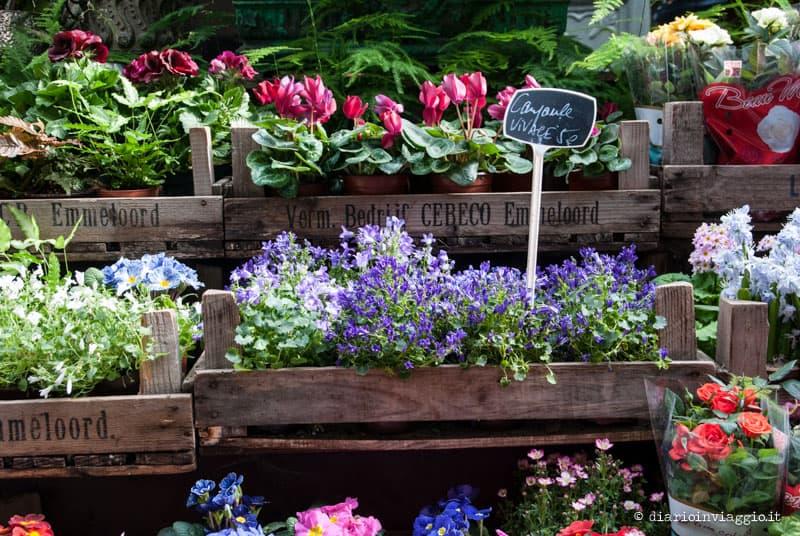 mercato dei fiori e degli uccelli parigi