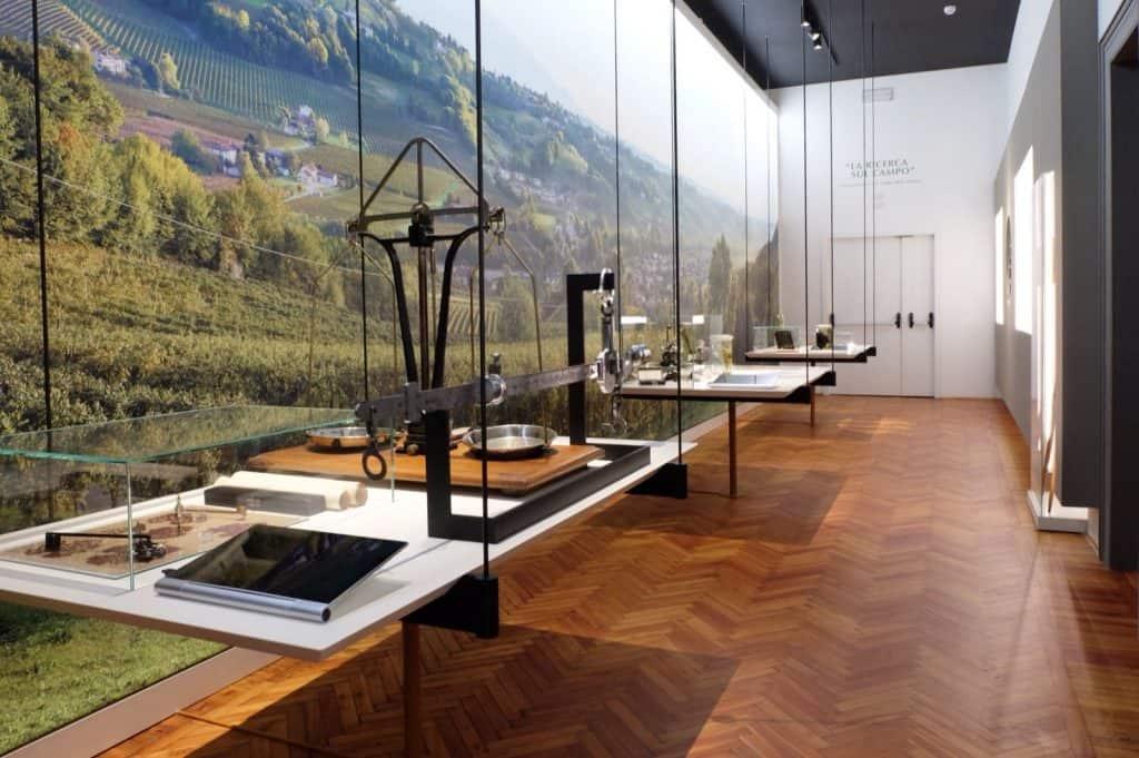 museo manzoni conegliano