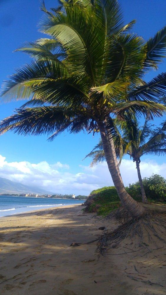 spiaggia Maui Hawaii