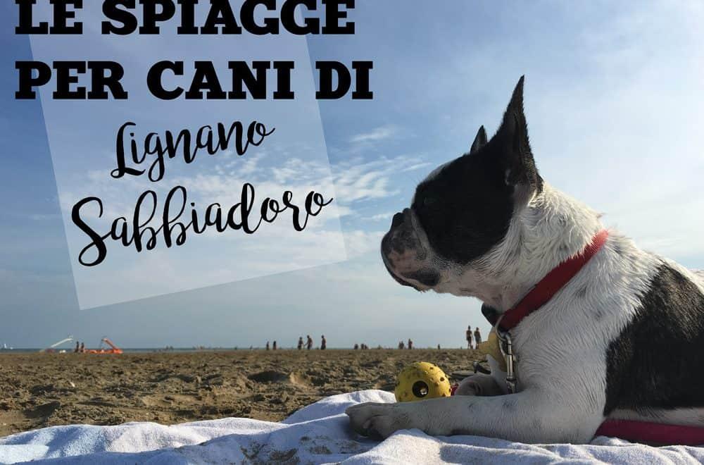 spiagge per cani a lignano Sabbiadoro