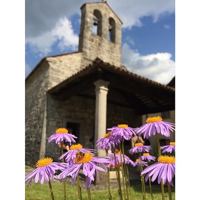 Il 2014 è stato anche scoprire un pezzetto in più di Friuli Venezia Giulia