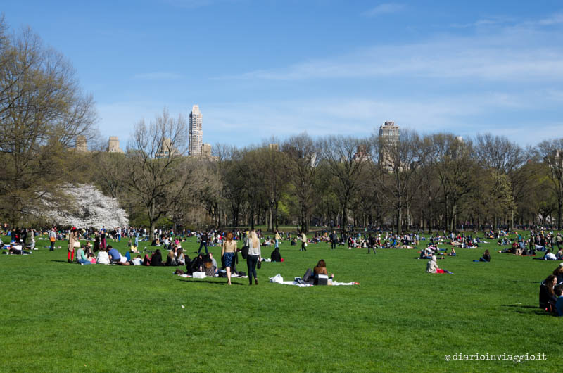 Sheep Meadow a Central Park, New York