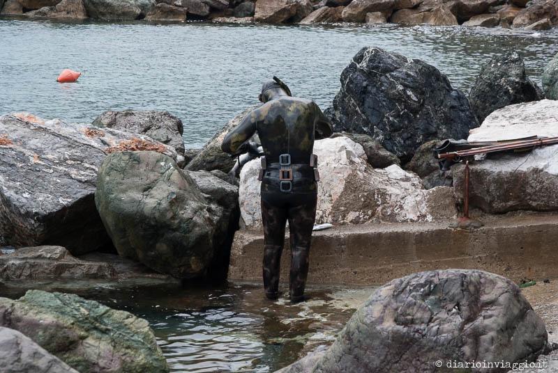 Pescatore con fiocina a Framura