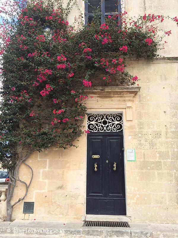 Una bouganville rigogliosa incornicia questa porta a Mdina, Malta