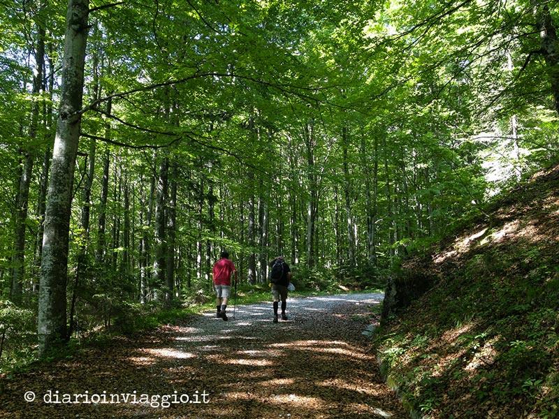 Escursione al Rifugio F.lli Grego