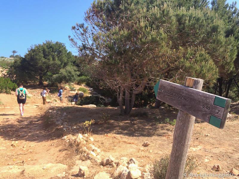 L'ingresso del sentiero per Cala Pulcino