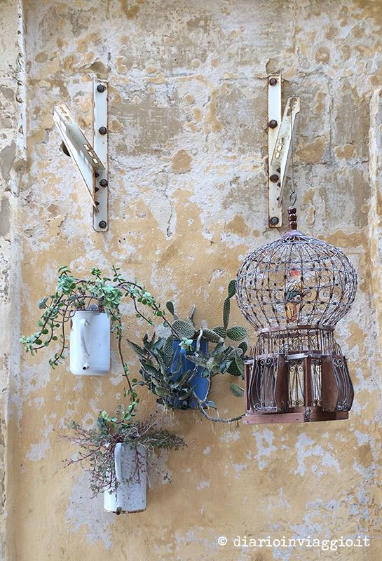 Piantine appese al muro a Victoria, Gozo